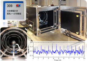 大シールド実験系と光ポンピング原子磁気センサにより計測したヒトの心磁波形