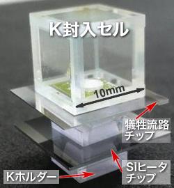 原子磁気センサセル